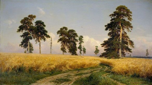 Ivan Shishkin-Rye (1878)